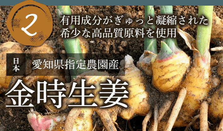 有用成分がぎゅっと凝縮された希少な高品質原料を使用 金時生姜